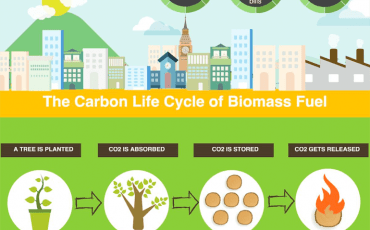 uses of biomass energy