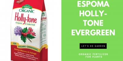 Espoma Organic Fertilizer Holly-Tone Reviews